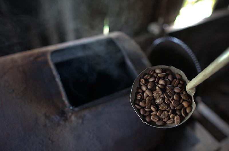 กาแฟขี้ชะมด